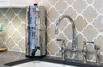 best home water filter review