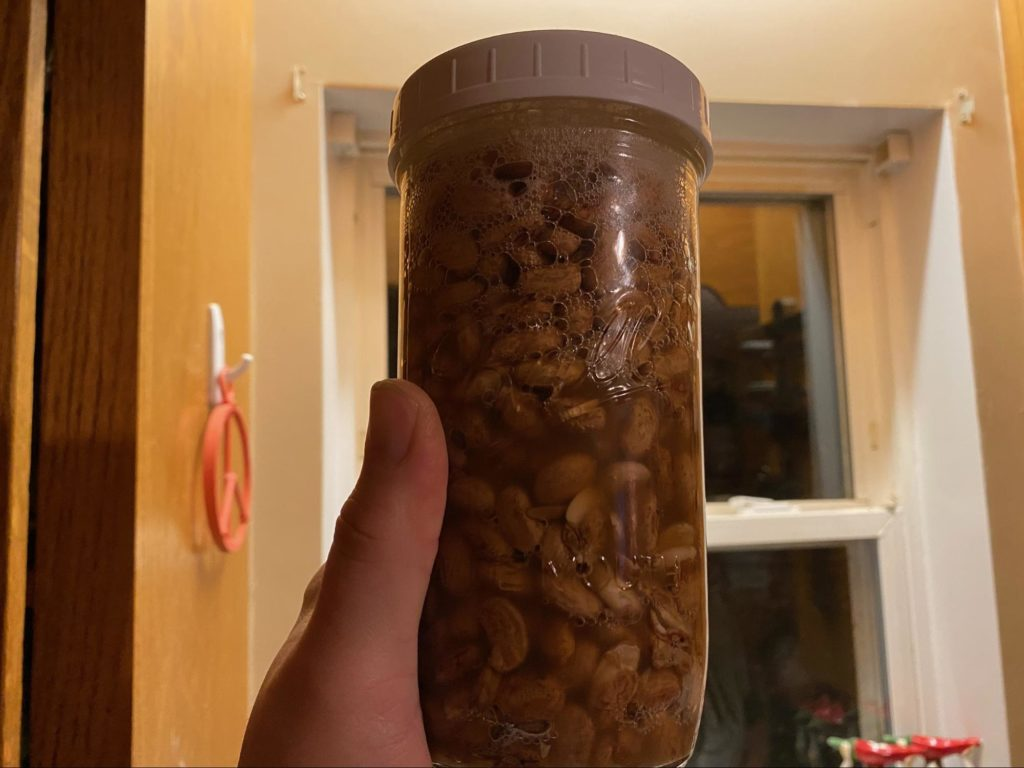 Soaked beans in a mason jar