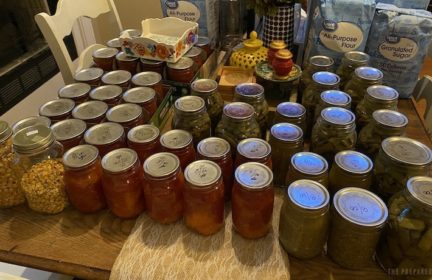 Beginner's guide to preserving food